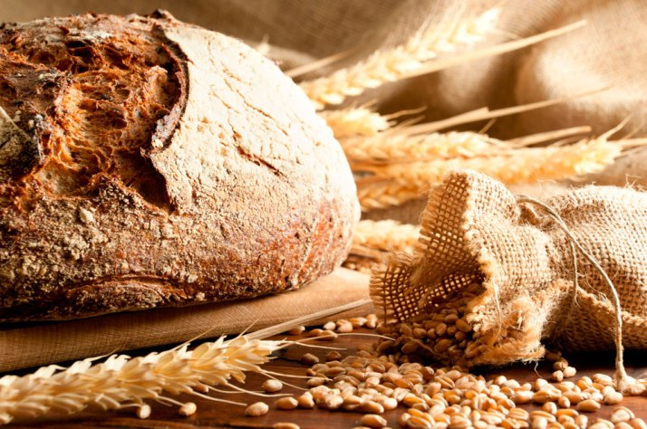 daily bread 1